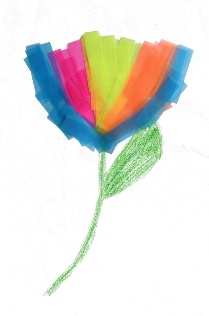 Geisterblume_Chiara(1024×677)